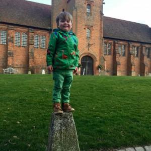 Oscar climbed up all by himself. Good balance!